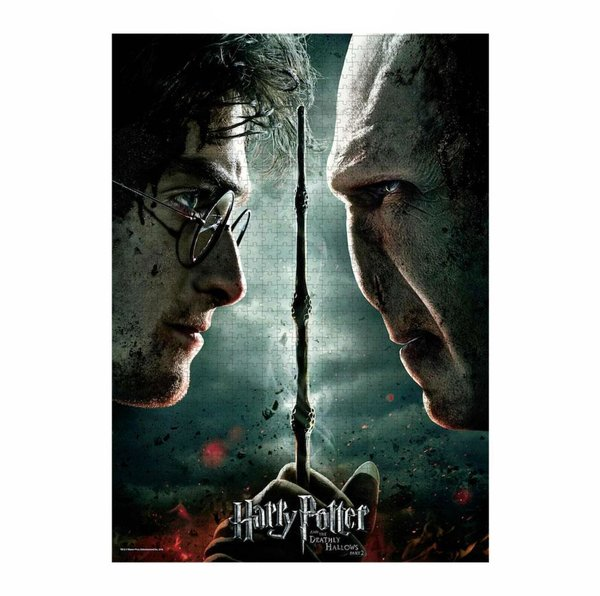 Harry Potter Puzzle Harry vs Voldemort